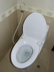 #2438 bidet (シャワー付きトイレ)