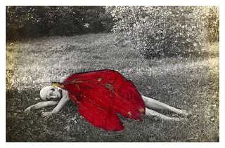 2013年国际美术摄影比赛获奖作品