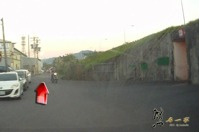佳園路波斯菊花海