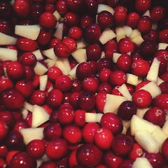 berry, red, frutti di bosco, fruit, food, cranberry, lingonberry,