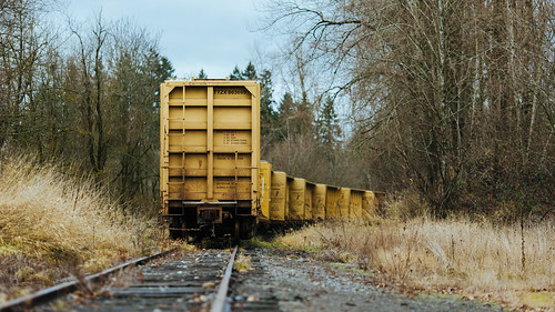 trees nature train canon dof traintracks rail depthoffield pacificnorthwest washingtonstate pnw freight cumberland freightcars lowpov canon135mmf2lusm canoneos5dmarkiii johnwestrock