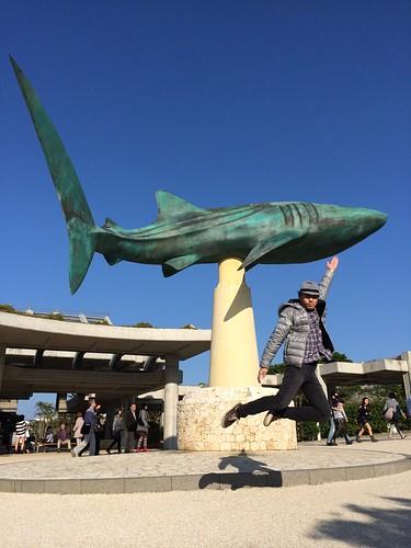 鯨鯊紀念碑