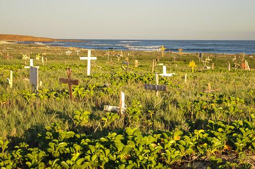 cemetery cementerio aruba netherlandsantilles petcemetery antillasholandesas cementeriodemascotas