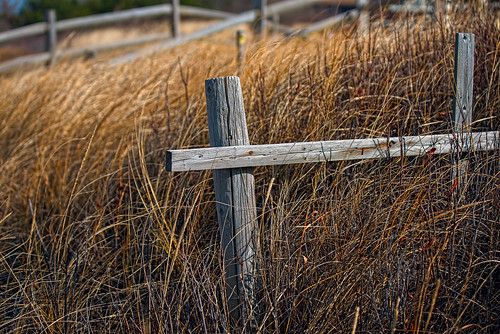 winter cold newjersey nikon 85mm windy capemaypoint d800