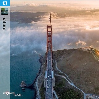 #Repost from @nature