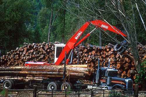 Logging is the mainstay of the economy in Barriere, North Thompson Valley, Thompson Okanagan, British Columbia, Canada