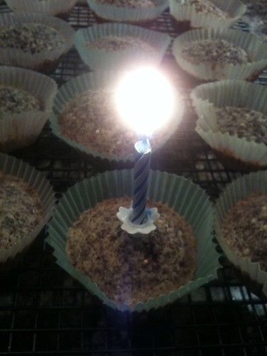 Paul's Birthday Cupcakes