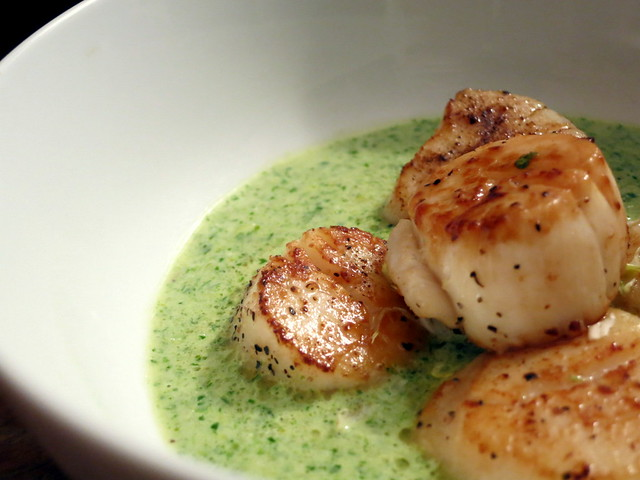 Sea scallops, watercress cream