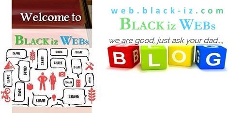 blogsauthorswebsites2