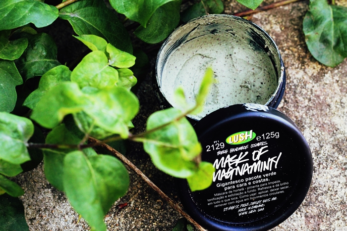 Review Lush Mask of Magnaminty, Lush Fresh Face Mask, Lush La Grande Mentheuse