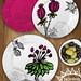 lisa_kirkbride_succulentsucculents_3a_WK2 by Lisa Kirkbride