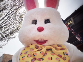 Run for your life!! There's a giant rabbit with crazy eyes running around Capitol Hill! Oh, I mean Happy Easter!!