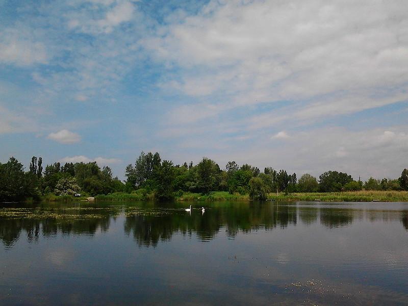 2014-05-29_Osnova_01