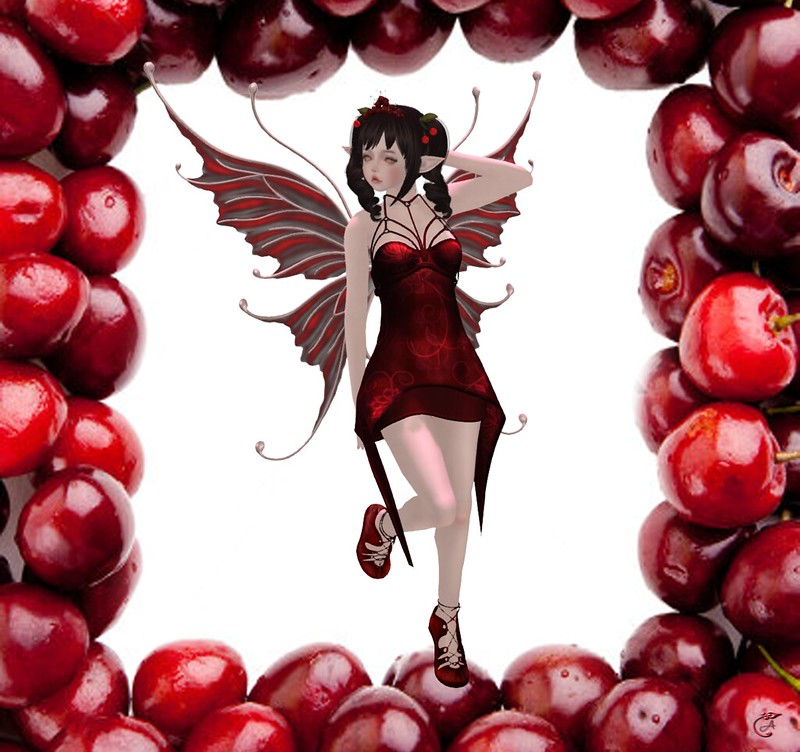 Cherry Fairy clos!eup