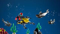 sharks attack!
