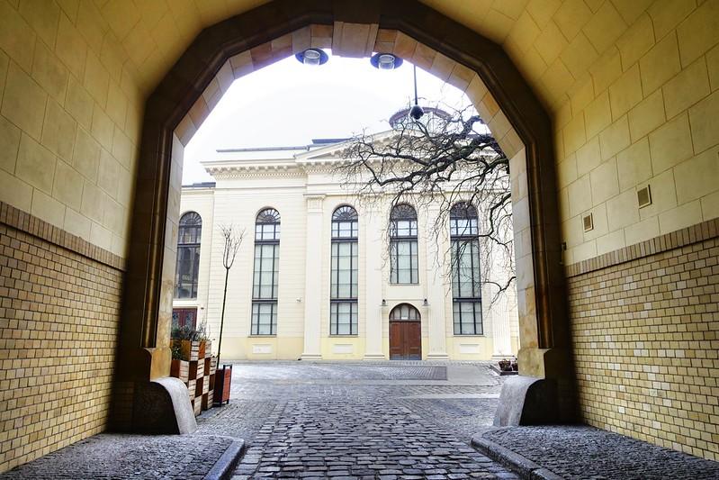 Sinagoga Wroclaw