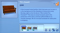 TV's Couch