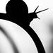 Escargot en ombre chinoise (1 sur 1) by lorangebleue121