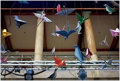 origami en el Instituto