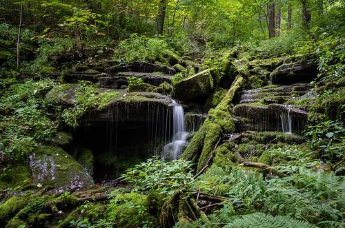 plants water waterfall moss unitedstates pennsylvania smcpda1855mmf3556alwr blueknobsp