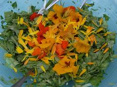 ღ Herzhafte Blätter und Blüten - ein Genuss