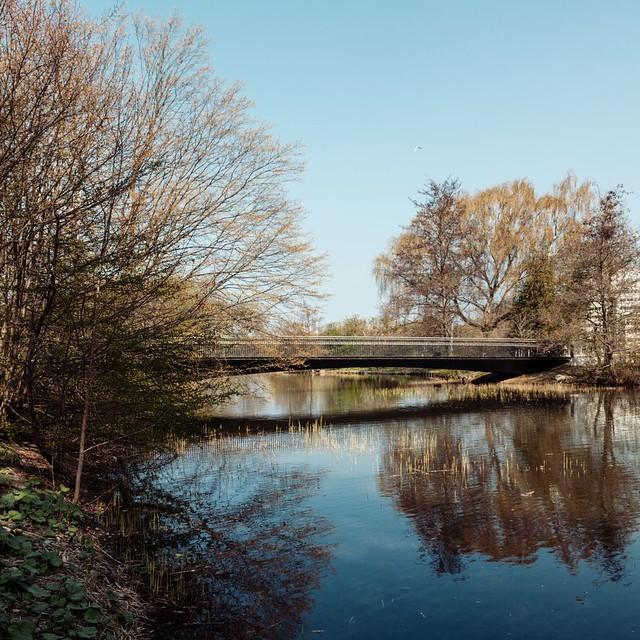 MLRP. Woven Bridge #1