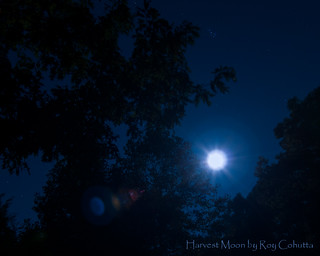 Harvest Moon, Orionid Meteor Shower, Pleiades