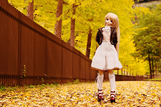 ドルフィー・ドリーム:小牧 愛佳:秋とか探して恋しくなるのはキミの体温_01