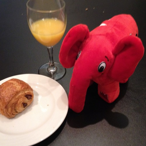 Red elephpant