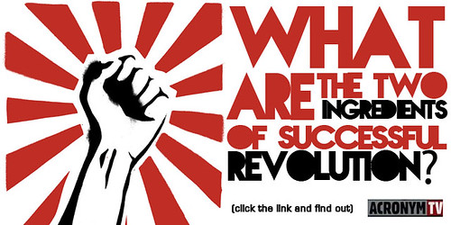 What are the two ingredients of successful revolution?