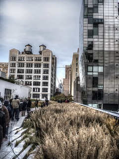 The High Line NYC 2013