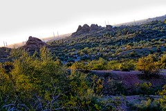 View from the base of Papago