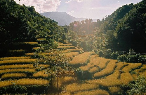nepal mountain 2004 analog trekking trek landscape round himalaya ricefields annapurna bazar nadi annapurnas canoneos300