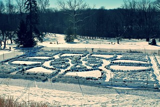 Hampton NHS ~ snow covered gardens - HFF!