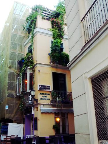 Im riesigen Gartenlokal der Altstadt Malagas