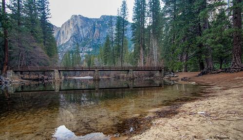 Still Crossing Bridges