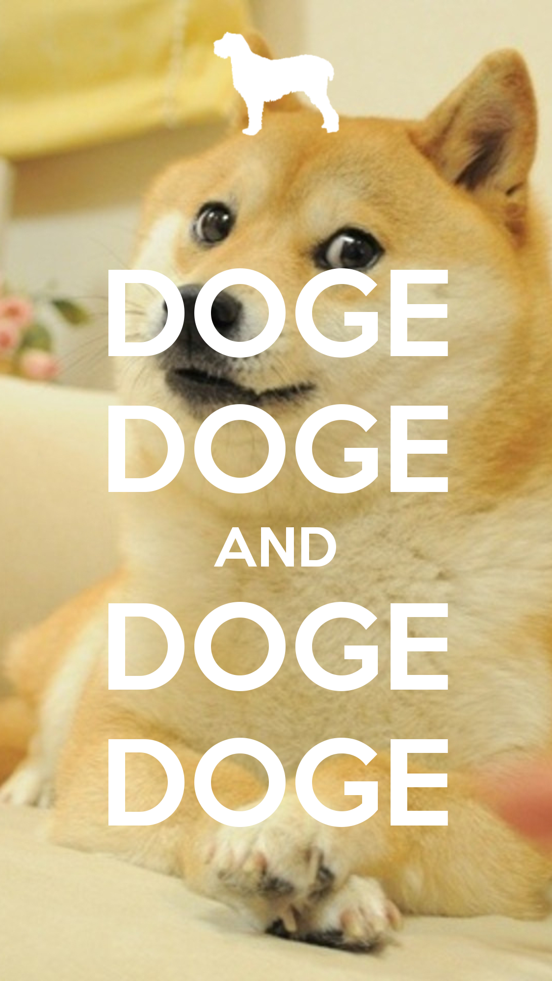 doge-doge-and-doge-doge-5 | Flickr - Photo Sharing!