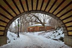 Central Park-Carousel, 01.25.14