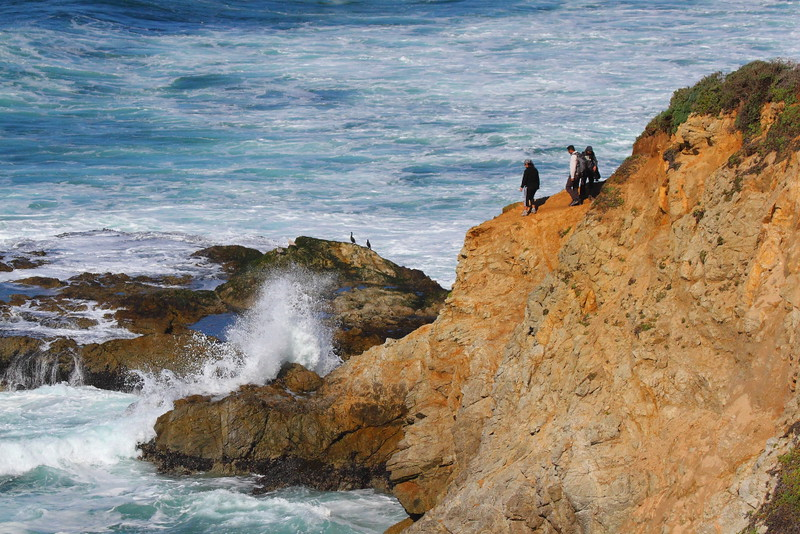 IMG_8520 Tomales Point