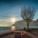 Hope. by Mattia Bonavida