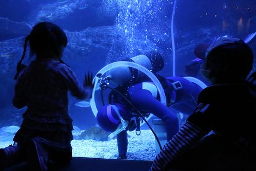 sumida_aquarium2