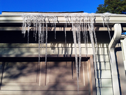Icicles (Jan 24 2014)