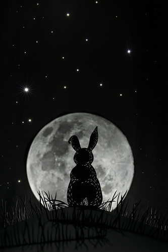 Rabbit in the Moon
