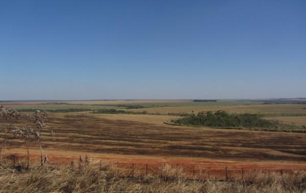 A-propriedade-onde-ocorreu-a-matança-registrada-como-Reserva-Natural-Campos-Morumbi(1).jpg
