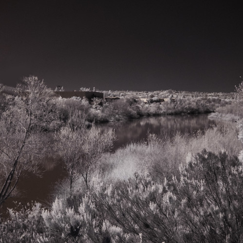 ir infrared infraredphotography convertedinfraredcamera surreal sandiegoriver landscape nature naturalbeauty naturephotography reflections