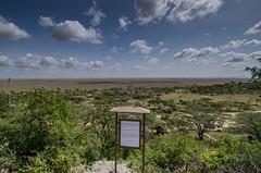 Tanzania-Serengeti-1f