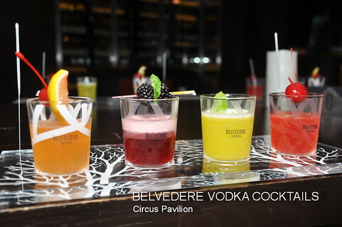 BELVEDERE VODKA COCKTAILS 6