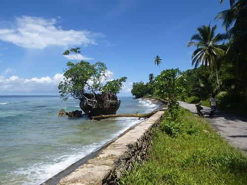 Papou13-Biak-Ile-Tour (45)1