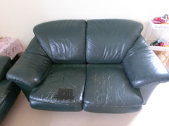 furniture, loveseat, couch, studio couch,