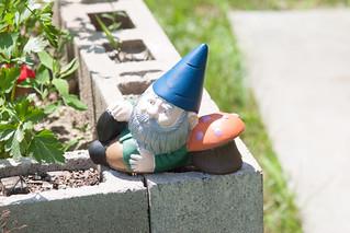Herb garden gnome.